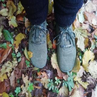 L'automne, c'est aussi l'occasion d'autres sensations : le crissement des feuilles mortes sous ses pas, ou leur moelleux si elles sont humides, le relief des glands, les balades en forêt. Profitez-en : chaque saison a ses charmes et l'on apprécie encore plus le retour du printemps !⠀ ⠀ Ici vous voyez le modèle des #chaussuresPIedsNus #leguano #go, pour profiter des sensations de l'automne jusqu'au bout des orteils pour le #bienetre du corps tout entier !